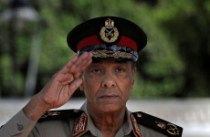 Egypt's new military leader 'was against reform' say Wikileaks cables