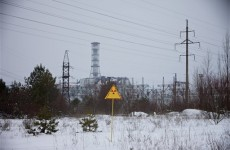Greenpeace says Chernobyl food radiation persists