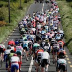 The main bunch on the road to Castleisland.