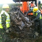 The Rolls Royce engine is pulled from the bog