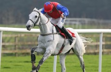 Mark Your Card: Stars to shine at Leopardstown