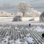 Heavy frost covers the landscape of Dunkeld in Perthshire, Scotland, as cold weather and frost continued across parts of the UK this week. (AP)