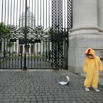 Toirleach O Murchu (3) dressed as a chicken, stood outside goverment buildings to demonstrate that the 