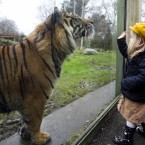 #2 Dublin Zoo - 1,000,000 visitors (Photo:Leon Farrell/Photocall Ireland)