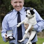 Pictured is Gda Stephen Neylon, who is based in Tallaght and rescued a terrier who had been beaten with a baton. 