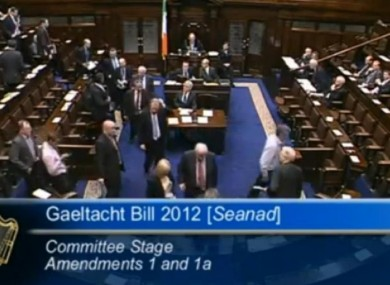 Opposition TDs abandon the Dil in protest at the government's handling of the Gaeltacht Bill.