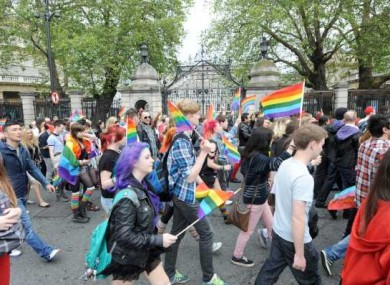 Participants in the 2012 Dublin Pride parade march past Leinster House.