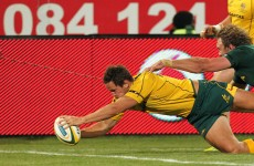 Springboks run Wallabies ragged for big win