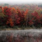 Leaves along the Androscoggin River are at peak color in Berlin, N.H. (AP Photo/Jim Cole)