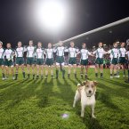 A stray dog joins in with the Irish players in observing the National Anthem in Pearse Stadium in Galway.