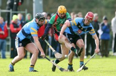 Fitzgibbon Cup round-up
