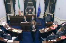 LIVE: Seanad debates legislation to liquidate IBRC