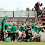 Ireland's bench and supporters celebrate at the final whistle. 