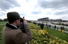 Friday at Cheltenham: 5 things to say when the office chat turns to racing today