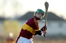 Leinster Colleges Hurling Final preview: Marble City pair set to do battle