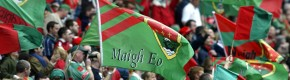 Mayo fans.